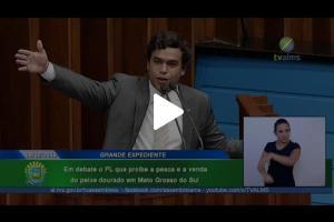 Embedded thumbnail for Beto Pereira reapresenta Projeto que proíbe pesca do Dourado em Mato Grosso do Sul